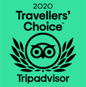 Travelers Choice 2021